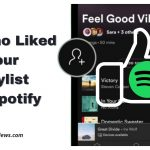 See Who Liked Your Playlist on Spotify